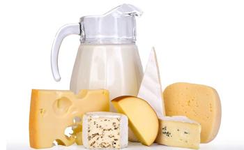 Acerca de los lácteos