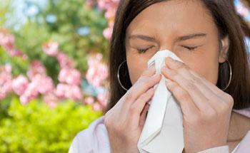 Resfriados y gripes: solución herbaria