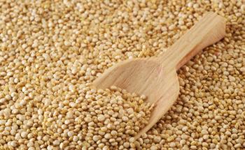 Amaranto: cereal hiperprotéico