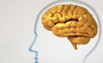 Sistema nervioso sano: la dieta como determinante