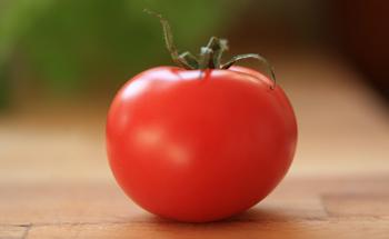 ¿Qué culpa tiene el tomate?