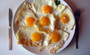 Las grasas y el colesterol
