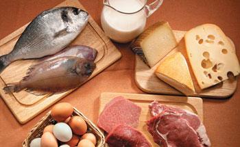 Propiedades de cada alimento