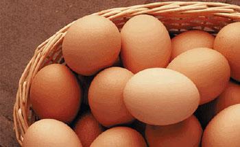 Dieta para la alergia al huevo