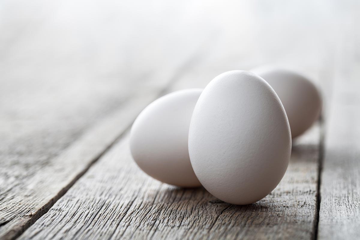 El huevo, segunda parte
