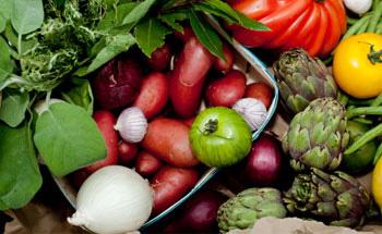 Conozca las mejores verduras II