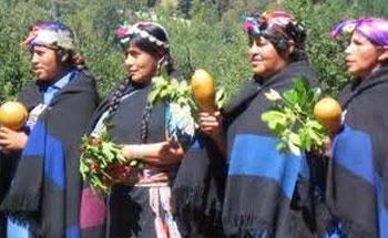 La farmacia Mapuche, cultura natural