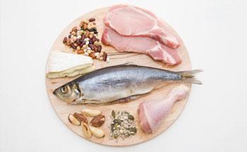 Las proteínas, ¿son necesarias?