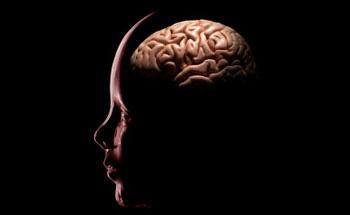 El Resveratrol oxigena tu cerebro