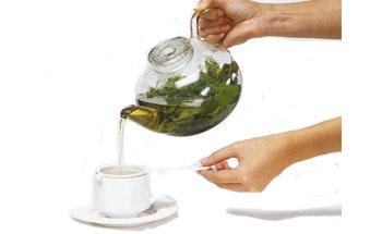 Dieta con té de Alga Fucus