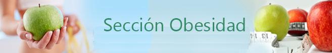 Sección Obesidad